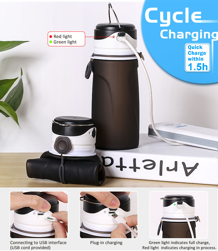 collapsible Led water bottle